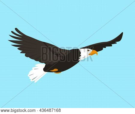 North American Bald Eagle Flying In Sky. Bird Icon Isolated On Blue Background. Eagle Bird For Natur