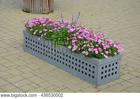 The Festive Square With Rows Of Flower Pots Leads Visitors Along The Promenade Of The Spa Park To Th
