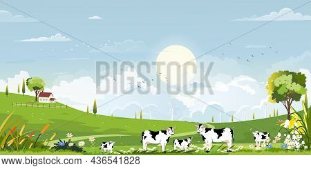 Spring Green Fields Landscape With Mountain, Blue Sky And Clouds Background,panorama Peaceful Rural