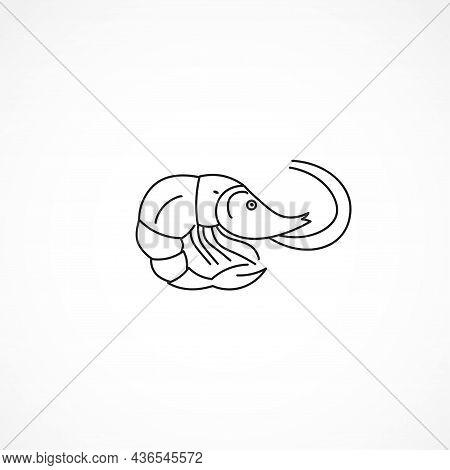 Shrimp Line Icon. Shrimp Isolated Line Icon