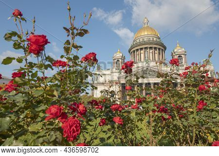 Saint Isaac's Cathedral And Bushes Of Red Roses. Saint Petersburg, Russia.