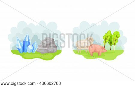 Gem And Rock Stone. Farm Animals On Green Meadow Vector Illustration