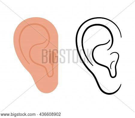 Human Ear Anatomical Icon. Medical Checkup And Test Of Hearing Organs Concept. Deafness Symbol On Wh