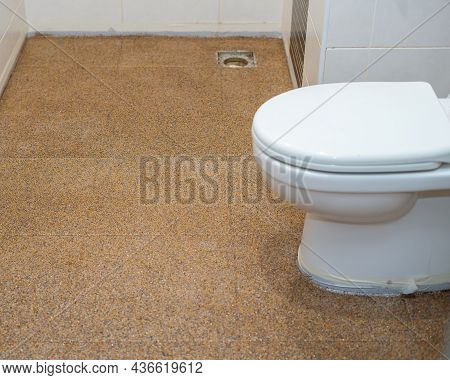 Bathroom Renovation With Color Flake Flooring Textured Background . Tiles Floor,sprinkle With Flake