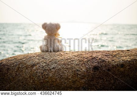 Alone Cute Teddy Bear Sitting On Stone With Sea And Over Light Day Nature Outdoor Landscape At Coast