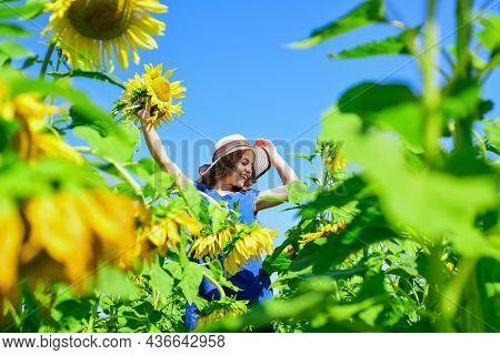 Carefree Girl Surrounded Sunflowers Enjoying Her Life, Celebrate Harvest Day