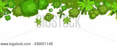 Jungle Forest Top View. Trees And Shrubs. Horizontal Seamless Composition. Overgrown Rainforest. Iso