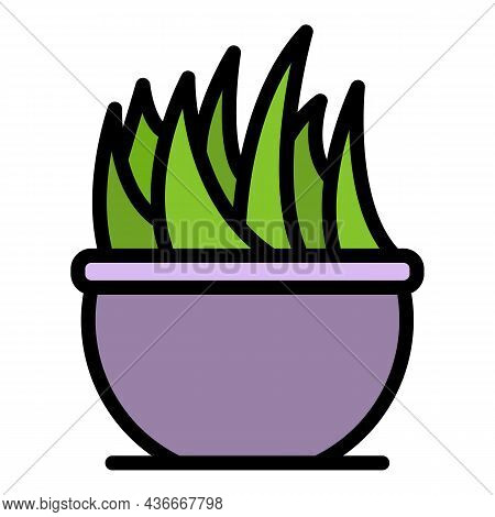 Flower In A Large Pot Icon. Outline Flower In A Large Pot Vector Icon Color Flat Isolated