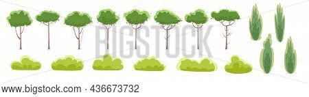 Set. Rustic Summer Beautiful Plants. Cartoon Style. Summer. Trees And Shrubs. Isolated On White Back
