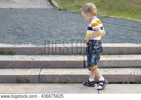 In The Summer, A Preschooler Got Lost In A Park On The Street Looking For His Parents