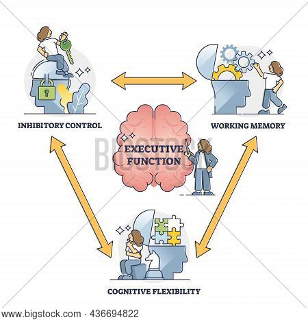 Executive Function Or Cognitive Control, Vector Illustration Outline Diagram. Brain Thought Process