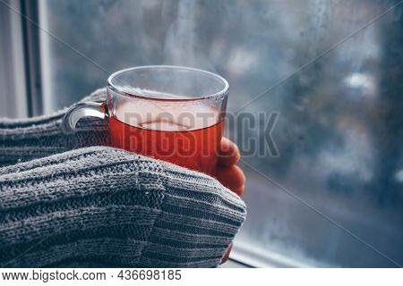 Female Hands In A Warm White Sweater Near The Window Hold A Hot Cup Of Fragrant Tea. Lifestyle At Ho