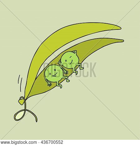 Two Peas In A Pod. Concept Of Similarity. Metaphorical Idiom.