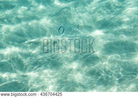 Ocean pollution. Plastic bottle underwater.