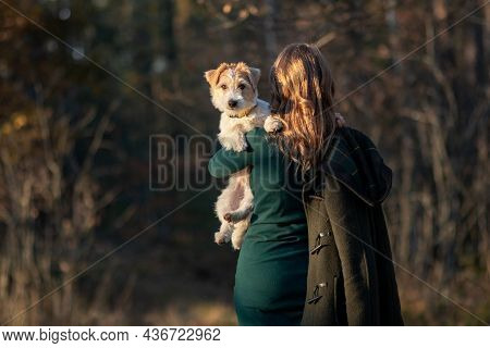 Portrait Of A Wire-haired Jack Russell Terrier Puppy And A Girl In A Green Dress In An Autumn Park