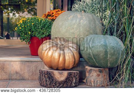 Pumpkin By The Doorstep Of A House. Decorated Front Door With Pumpkin And Potted Plant. Autumn Seaso