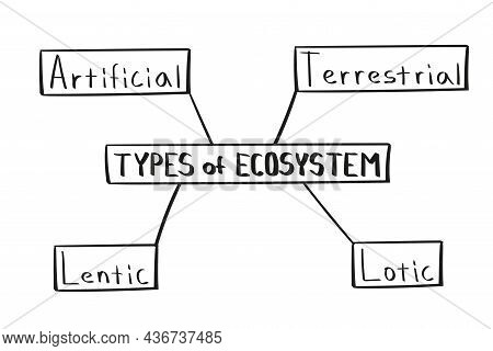 Concept Of Types Of Ecosystem Mind Map In Handwritten Style.