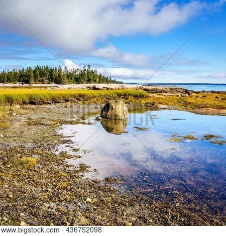 Low tide at the Atlantic coast of Acadia National Park in Maine