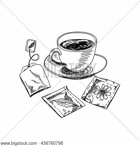 Tea Cup Hand Drawn Black And White Vector Illustration. Retro Teacup And Teabags Sketch. Breakfast D