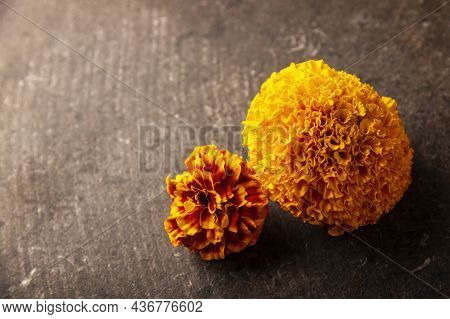 Close Up Of Cempasuchil Orange Flowers Or Marigold. (tagetes Erecta) Traditionally Used In Altars Fo