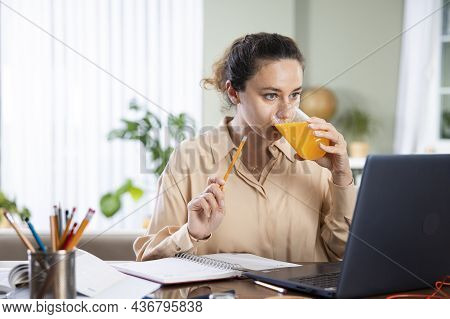 Young Woman Working On Laptop Computer From Home