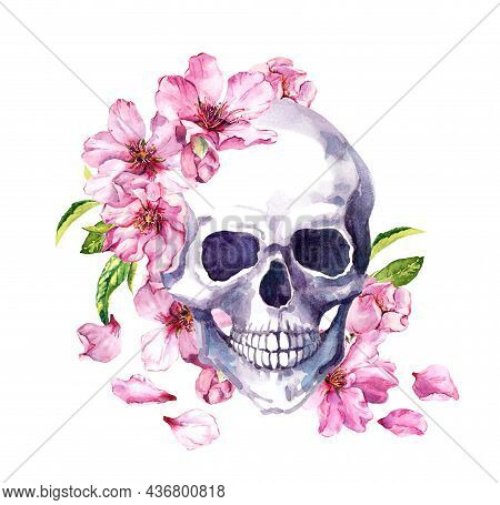 Human Skull In Pink Cherry Blossom, Spring Flowers Of Sakura, Floral Petals. Watercolor