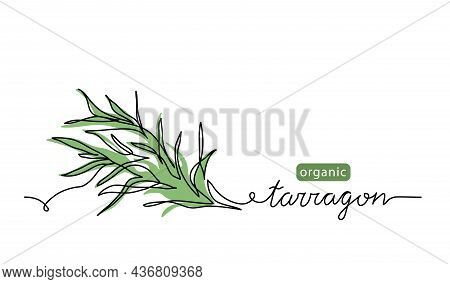 Tarragon, Estragon Leaves Simple Vector Sketch Drawing. One Continuous Line Art Illustration For Her