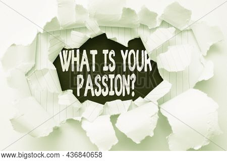 Text Sign Showing What Is Your Passion Question. Business Overview Asking About His Strong And Barel