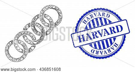Vector Network Circle Chain Framework, And Harvard Blue Rosette Scratched Seal Print. Linear Frame N