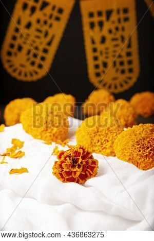 Cempasuchil Orange Flowers Or Marigold. (tagetes Erecta) Traditionally Used In Altars For The Celebr