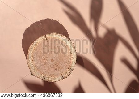 Woodcut Lying On A Trendy Beige Background With Shadows Of Flowers. A Wooden Platform With Shades Fo