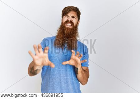 Caucasian man with long bear standing over isolated background disgusted expression, displeased and fearful doing disgust face because aversion reaction. with hands raised
