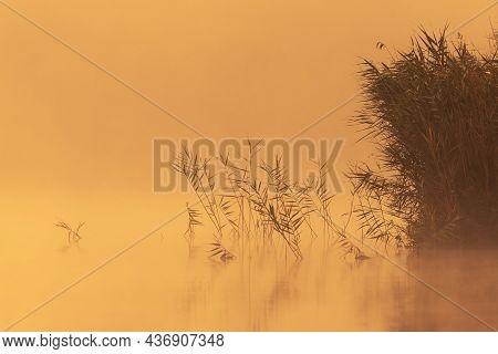 Beautiful Sunrise On The Lake, Orange Colors At Sacalaia, Transilvania