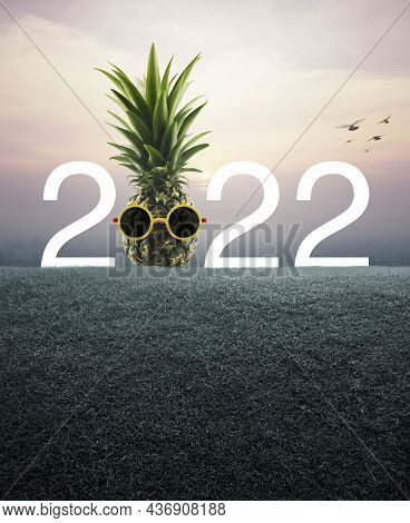 Pineapple With Sunglasses And 2022 White Text On Green Grass Field Over Aerial View Of Cityscape At