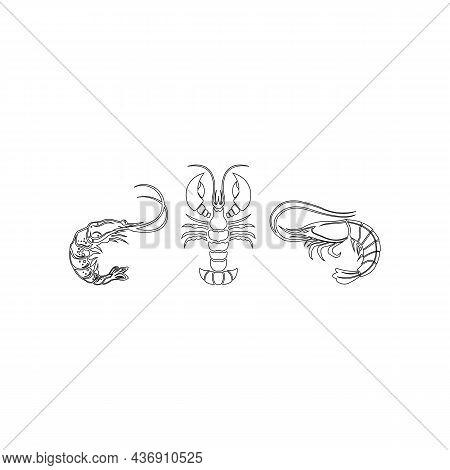 Set Of Seafood Icons Line Shrimp Isolated On White Background