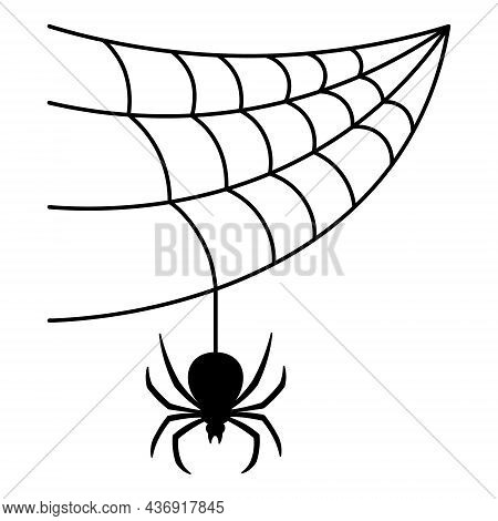The Spider Weaves A Web. Black Widow. Silhouette. The Insect Hangs On A Thin Thread In Anticipation
