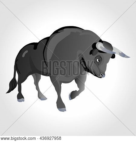 Bull Isolated Animal Illustration On White Background. Bull Illustration.