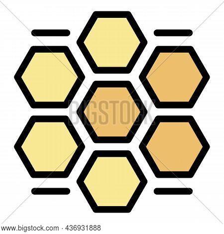 Honey Comb Procedure Icon. Outline Honey Comb Procedure Vector Icon Color Flat Isolated