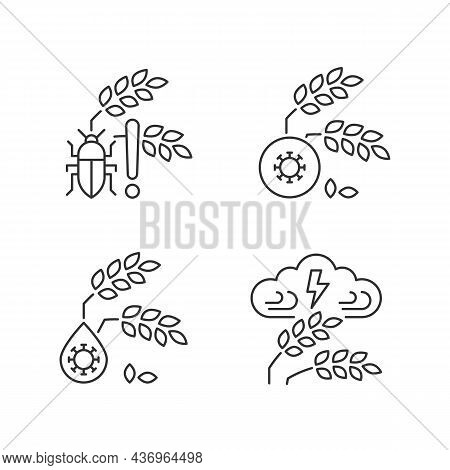 Crop Loss Reasons Linear Icons Set. Pests Danger. Crop Diseases. Adverse Weather And Climate Changes