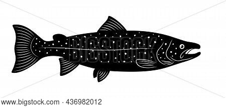 Silhouette Of Atlantic Salmon Is On A White Background.