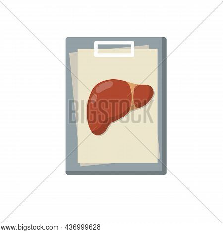 Human Liver. Treatment Of Anatomical System. Medical Analysis Of Internal Organs. Document File. Dia