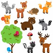 Cartoon Style Woodland and Forest Animals Collection poster