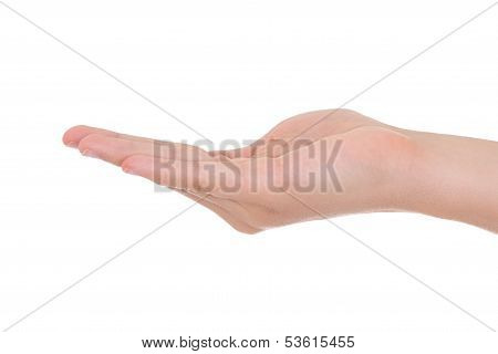 Open Palm Male Hand  Isolated On A White Background