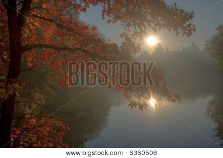 Early morning in the fog in Central Park New York City at sunrise poster