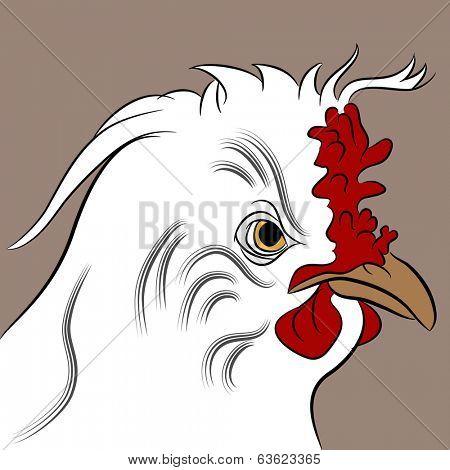 An image of a fluffed hen.