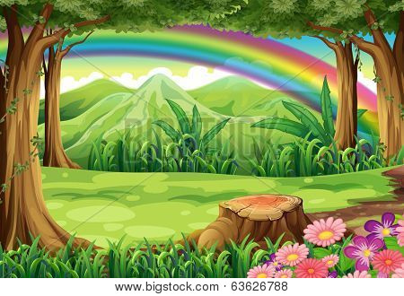 Illustration of a rainbow and a forest
