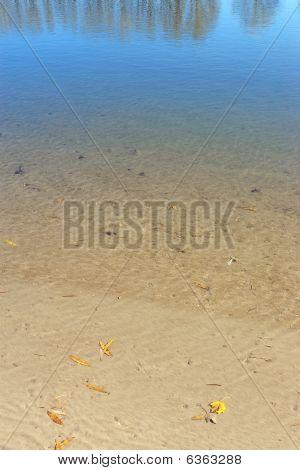 sand beach bottom