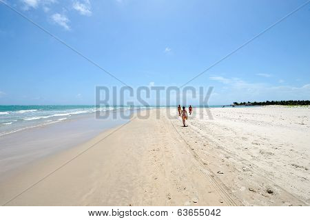 People walking on the beach