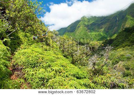 Iao Valley State Park On Maui Hawaii