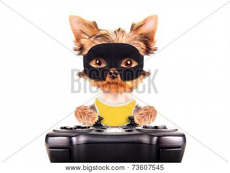poster of super hero puppy dog wearing a black mask and play on game pad